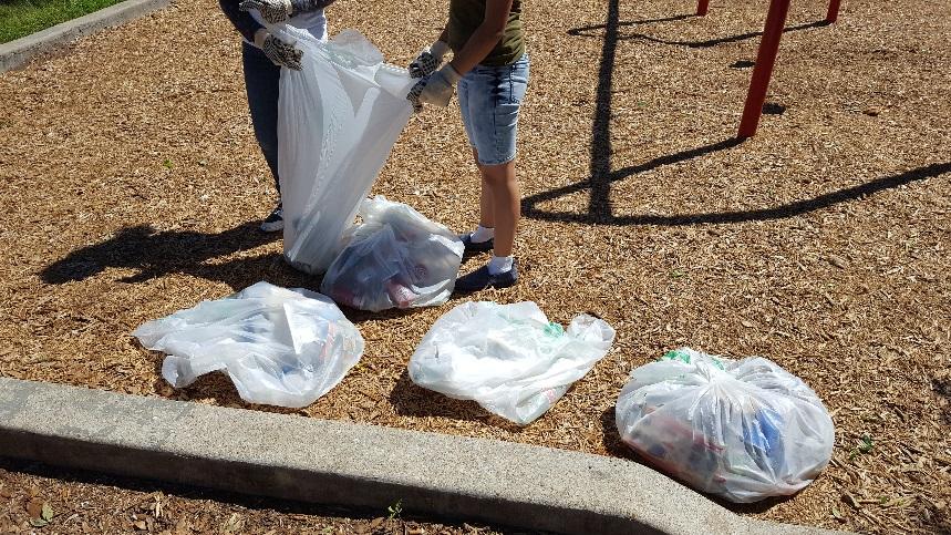 Community Park Clean up